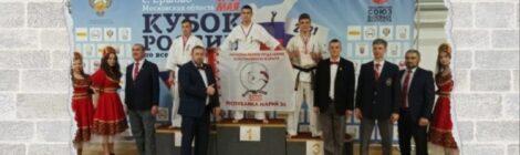 Кубок России по всестилевому карате
