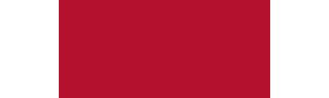 II Региональный чемпионат «Молодые профессионалы» (WorldSkills Russia) – 2017 в Республике Марий Эл