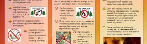 Методические рекомендации Комитета гражданской обороны и защиты населения Республики Марий Эл