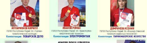 Полуфинал VIII Национального чемпионата «Молодые профессионалы» (WorldSkills Russia) 2020